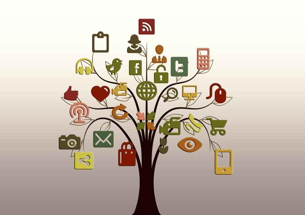 social albero