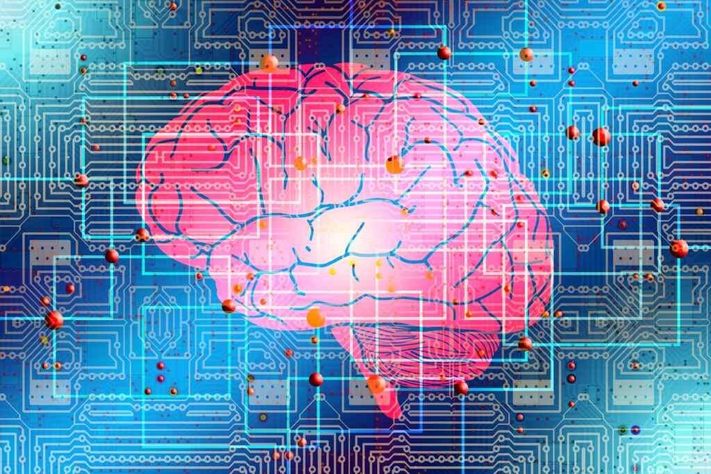 matrix cervello